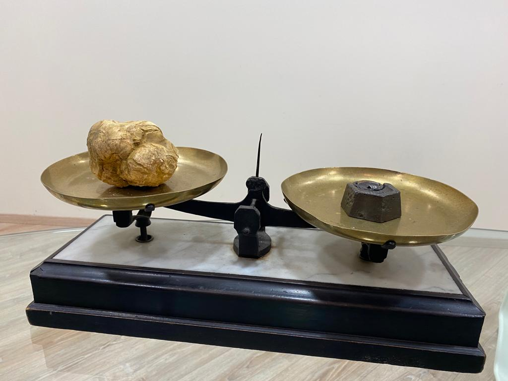 bilance-da-tartufi